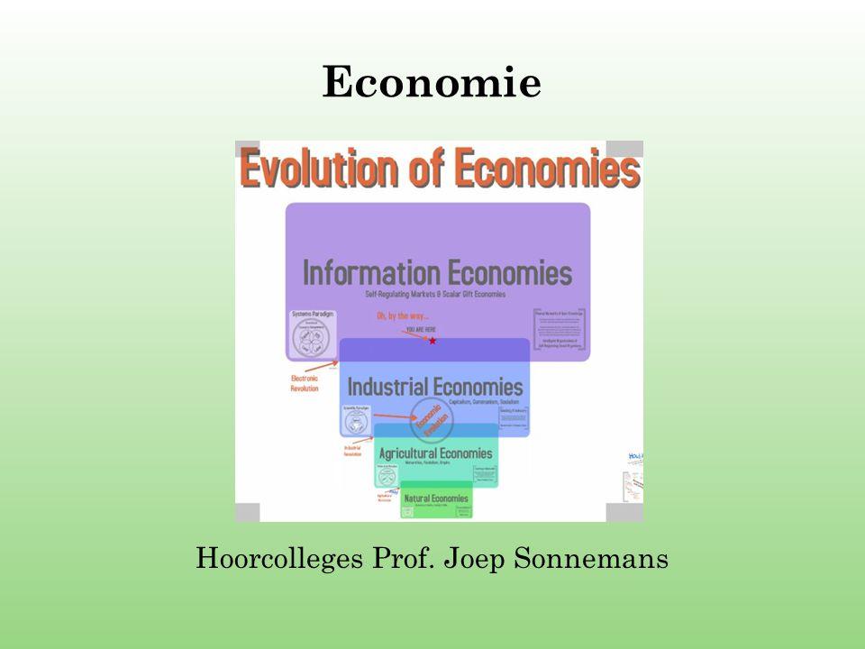 Hoorcolleges Prof. Joep Sonnemans