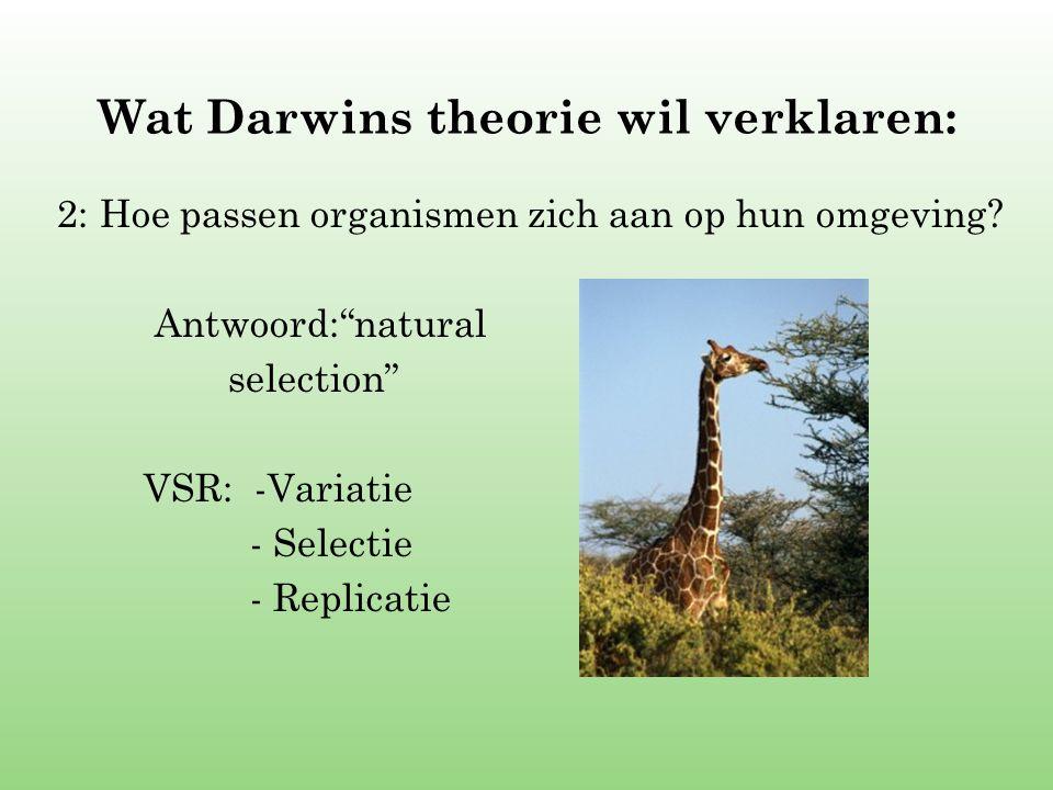 Wat Darwins theorie wil verklaren: