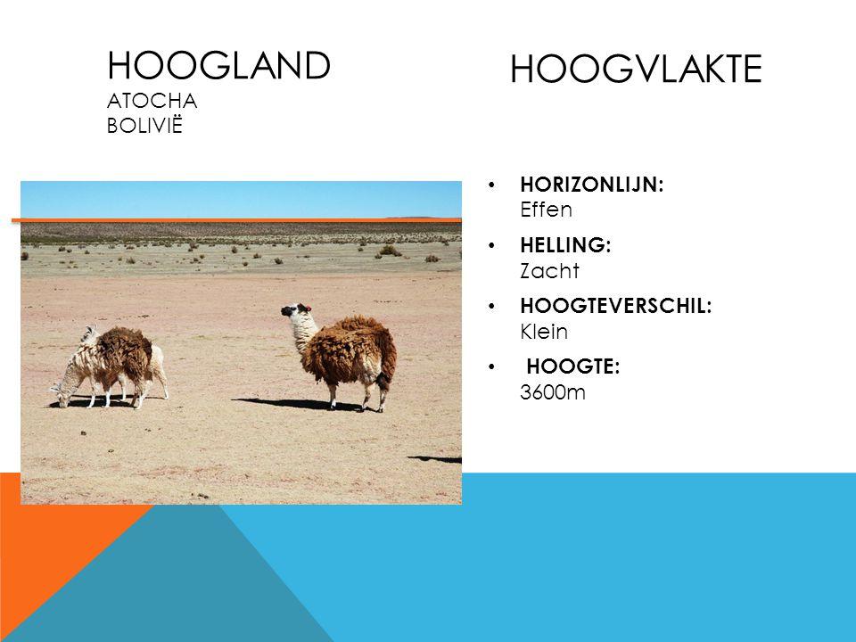 Hoogvlakte Hoogland Atocha Bolivië HORIZONLIJN: Effen HELLING: Zacht