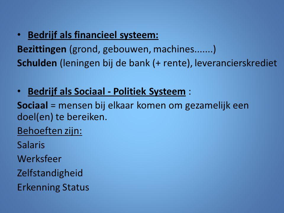 Bedrijf als financieel systeem: