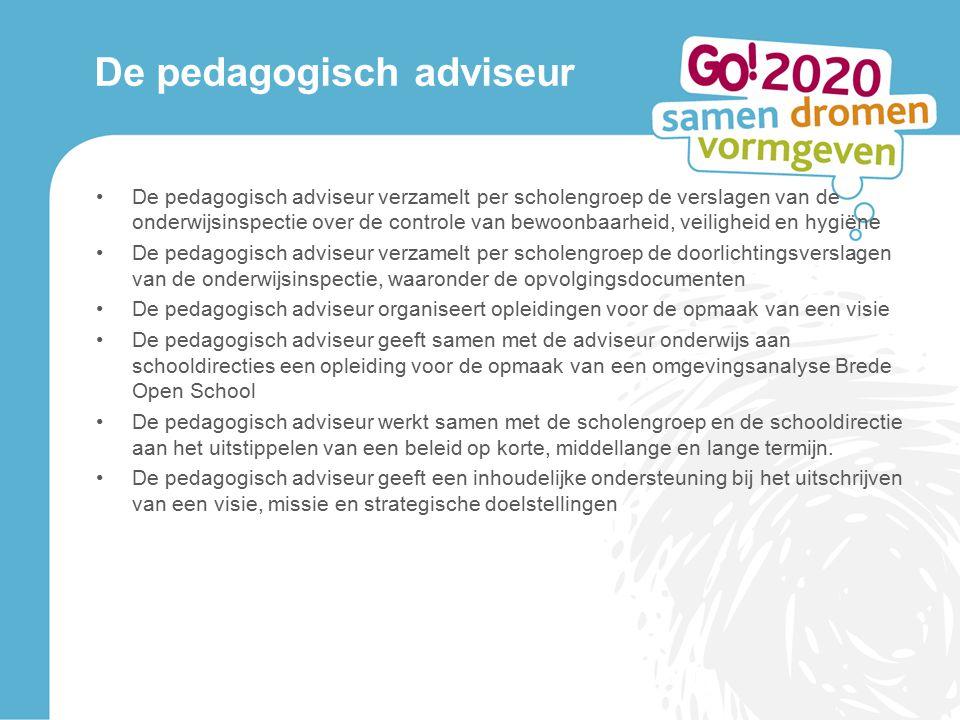 De pedagogisch adviseur