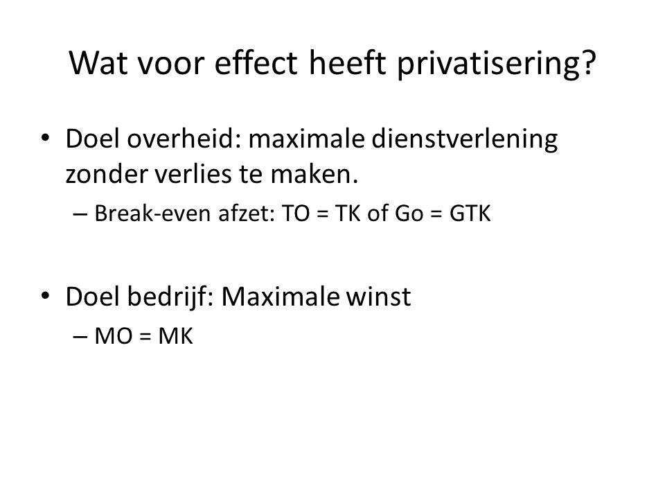 Wat voor effect heeft privatisering