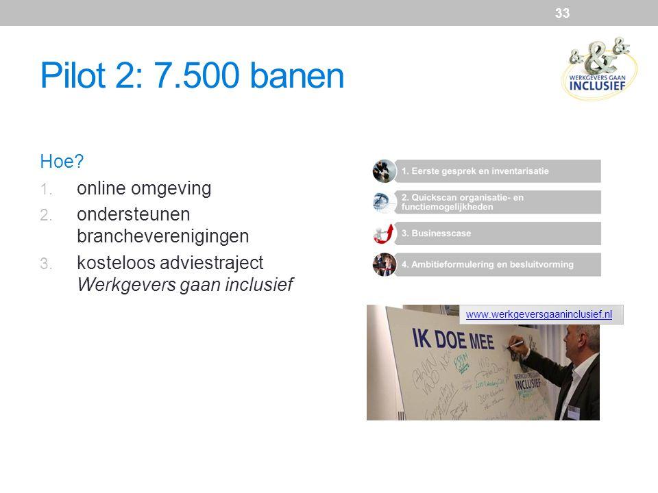 Pilot 2: 7.500 banen Hoe online omgeving