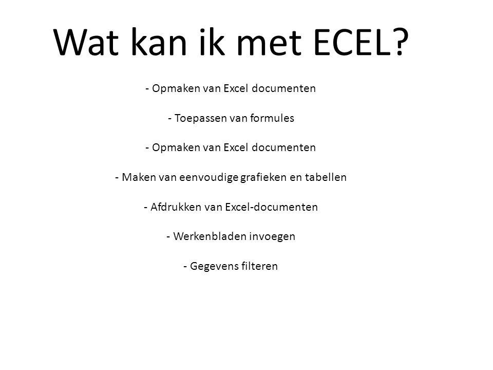 Wat kan ik met ECEL - Opmaken van Excel documenten