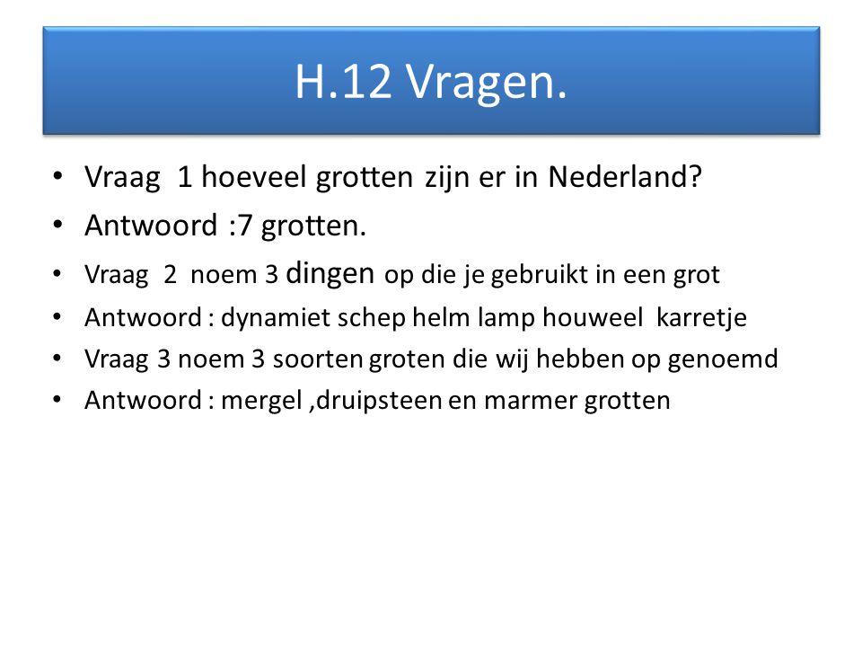 H.12 Vragen. Vraag 1 hoeveel grotten zijn er in Nederland
