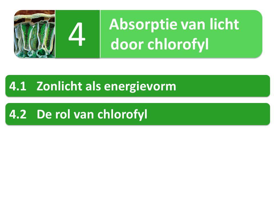 4 door chlorofyl 4.1 Zonlicht als energievorm 4.2 De rol van chlorofyl