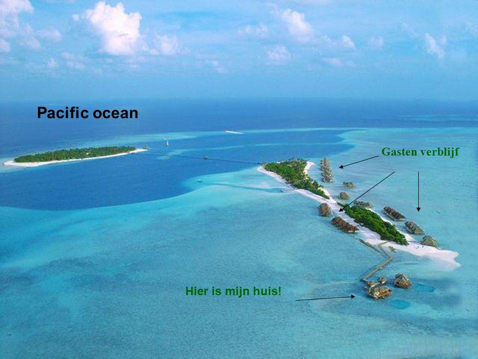 Pacific ocean Gasten verblijf Hier is mijn huis!