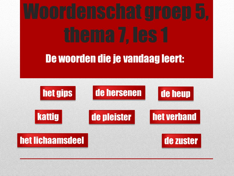 Woordenschat groep 5, thema 7, les 1