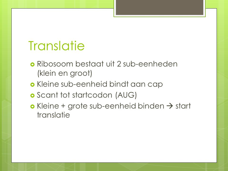 Translatie Ribosoom bestaat uit 2 sub-eenheden (klein en groot)