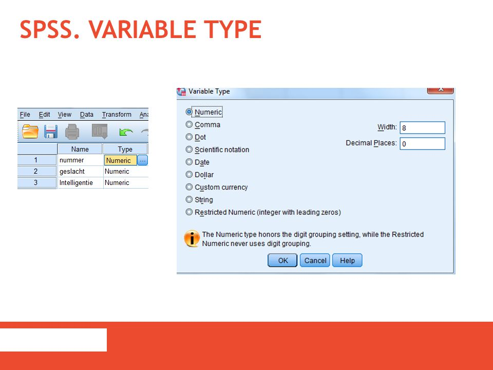 SPSS. Variable Type