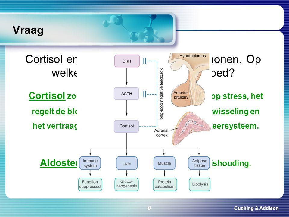 Aldosteron zorgt voor de zout- en waterhuishouding.