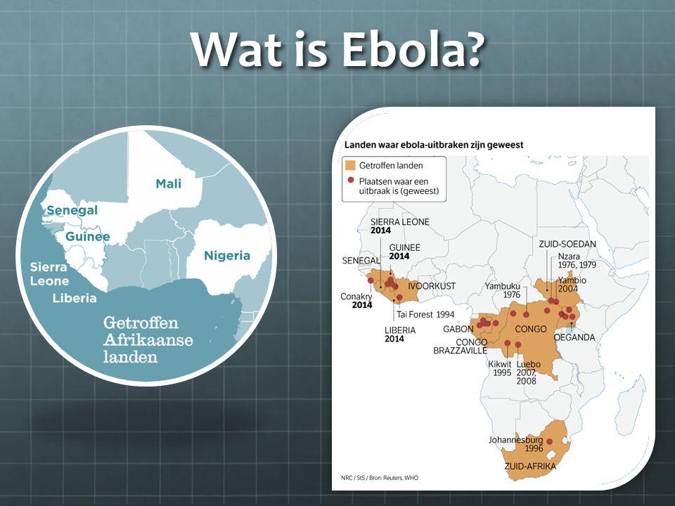 Wat is Ebola