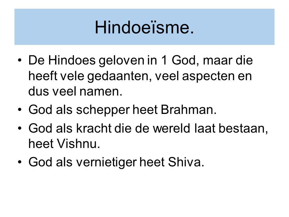 Hindoeïsme. De Hindoes geloven in 1 God, maar die heeft vele gedaanten, veel aspecten en dus veel namen.
