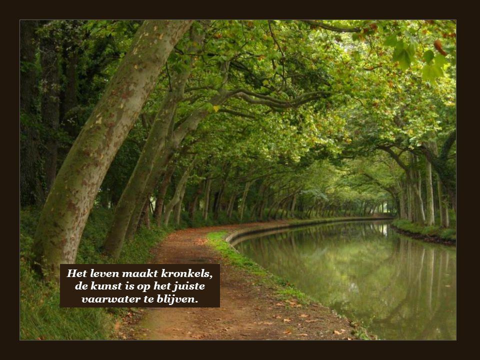 Het leven maakt kronkels, de kunst is op het juiste vaarwater te blijven.