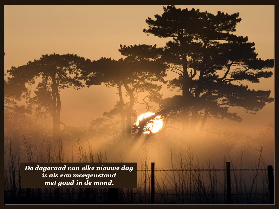 De dageraad van elke nieuwe dag is als een morgenstond met goud in de mond.