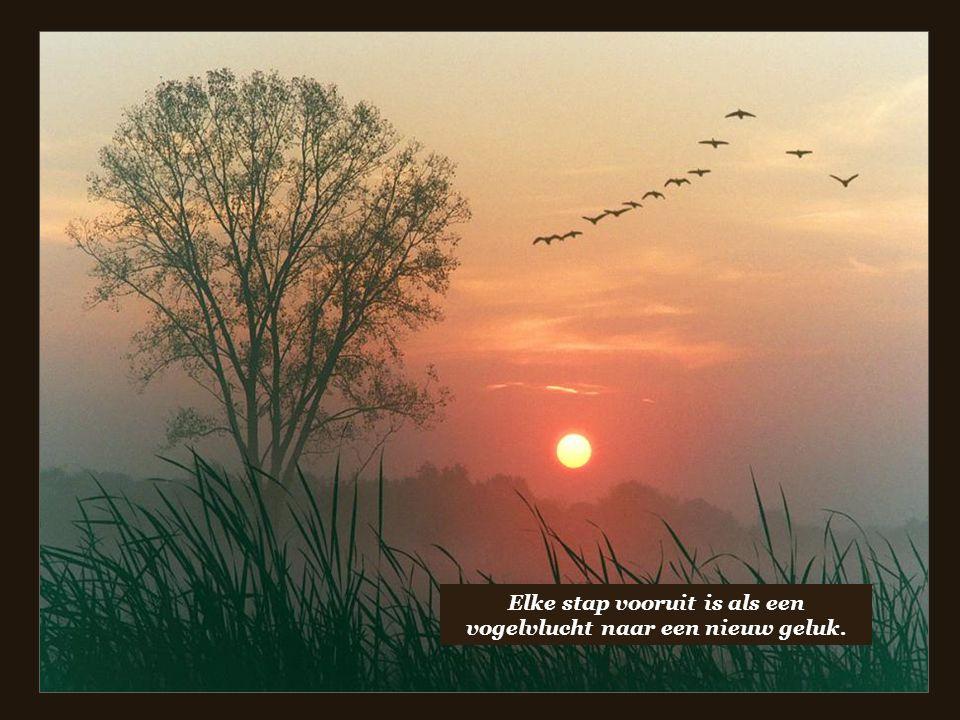 Elke stap vooruit is als een vogelvlucht naar een nieuw geluk.