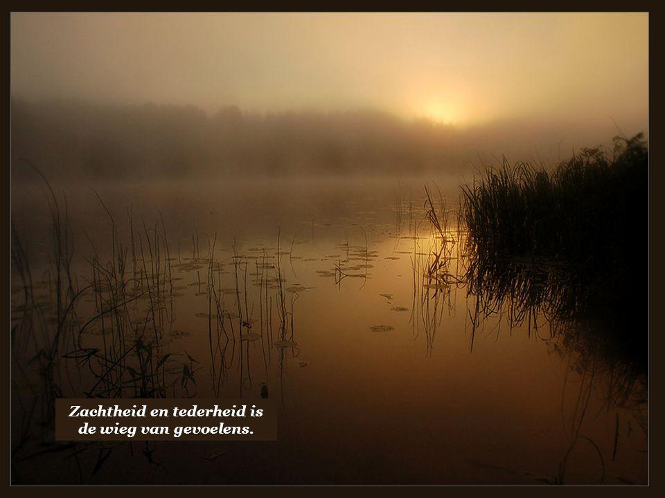 Zachtheid en tederheid is de wieg van gevoelens.