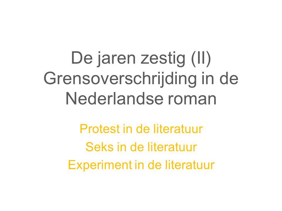 De jaren zestig (II) Grensoverschrijding in de Nederlandse roman