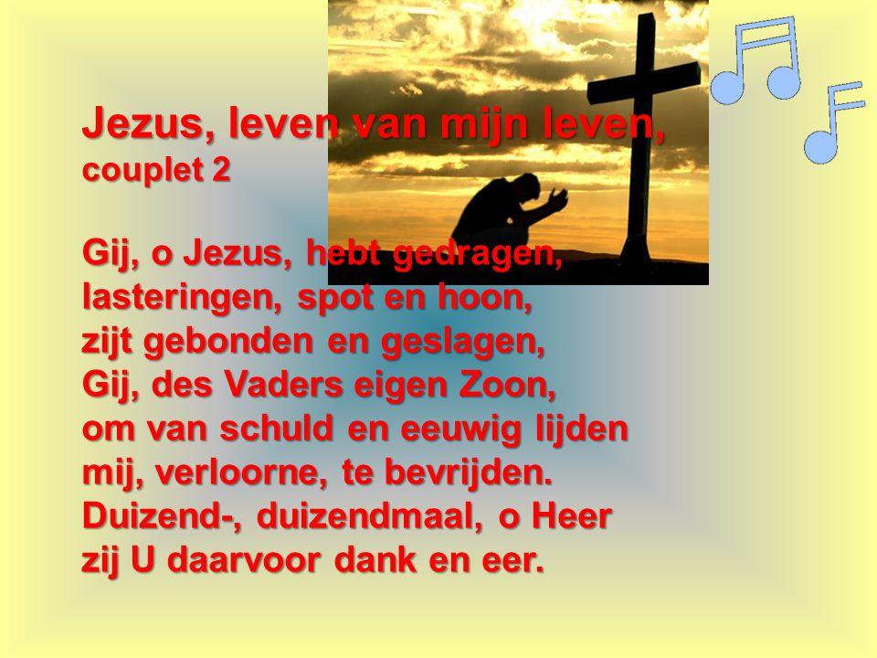 Jezus, leven van mijn leven,