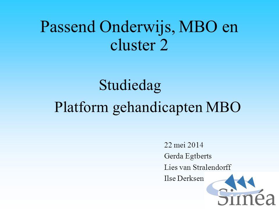 Passend Onderwijs, MBO en cluster 2