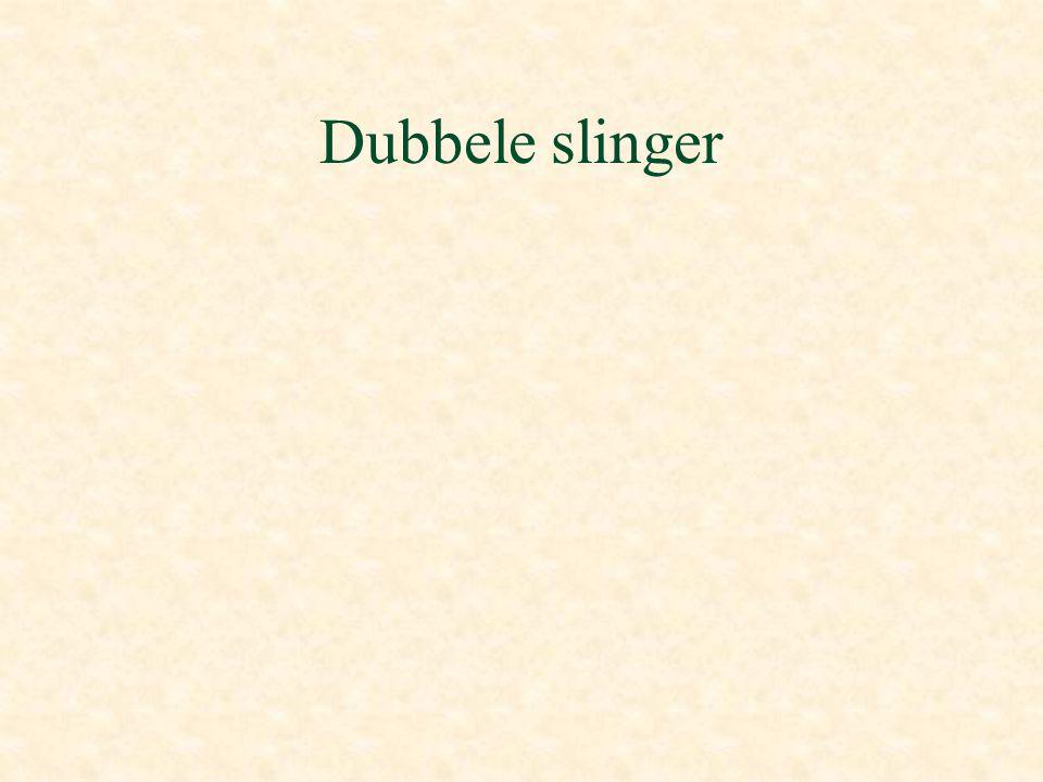 Dubbele slinger