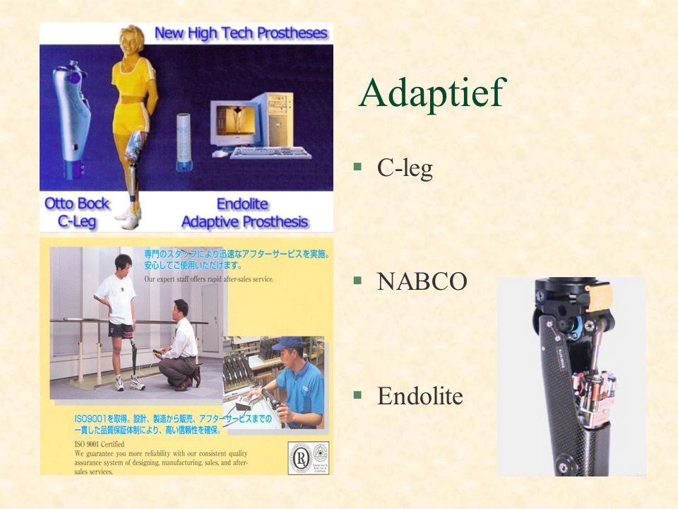 Adaptief C-leg NABCO Endolite