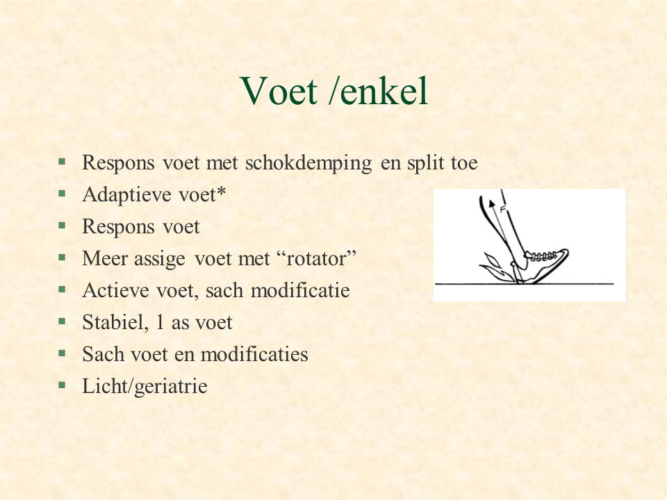 Voet /enkel Respons voet met schokdemping en split toe Adaptieve voet*