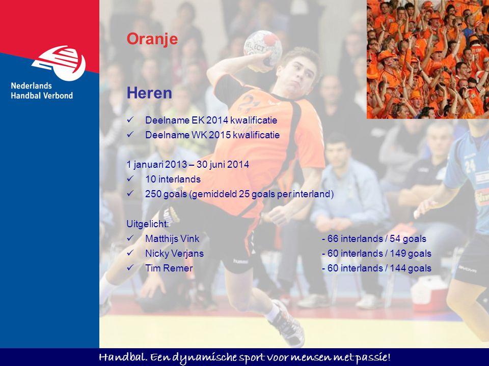 Oranje Heren Deelname EK 2014 kwalificatie