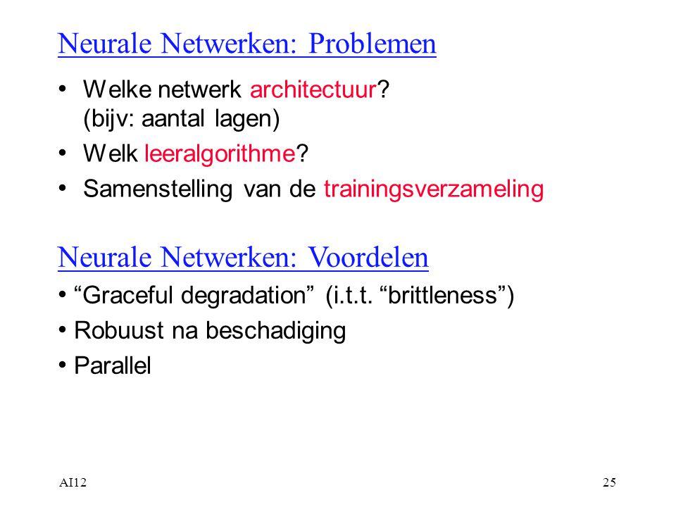 Neurale Netwerken: Problemen