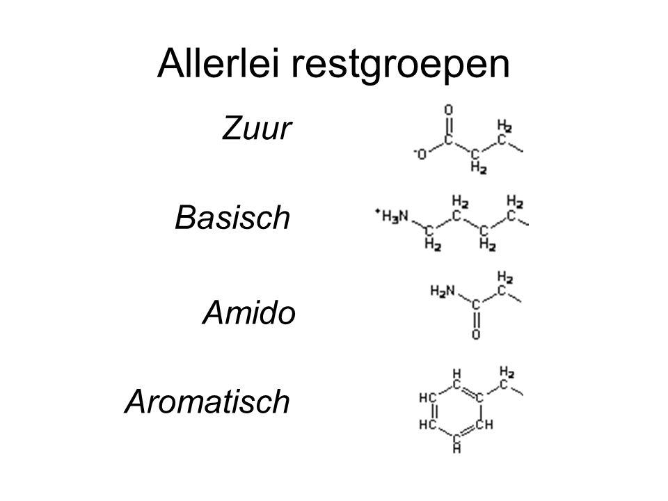 Allerlei restgroepen Zuur Basisch Amido Aromatisch