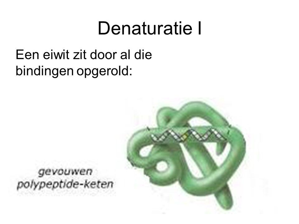 Denaturatie I Een eiwit zit door al die bindingen opgerold:
