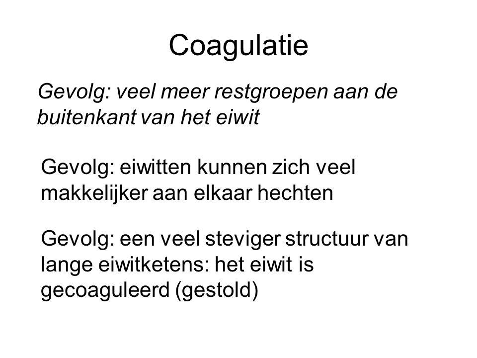 Coagulatie Gevolg: veel meer restgroepen aan de buitenkant van het eiwit. Gevolg: eiwitten kunnen zich veel makkelijker aan elkaar hechten.