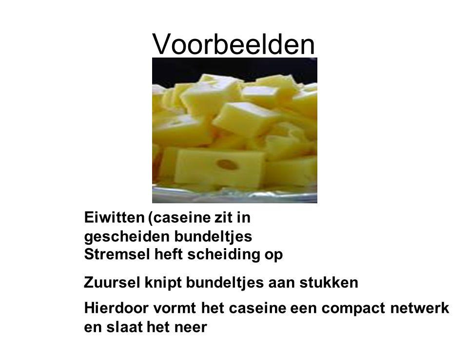 Voorbeelden Eiwitten (caseine zit in gescheiden bundeltjes