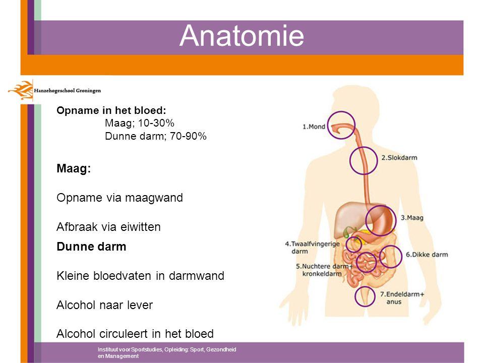 Anatomie Opname in het bloed: Maag; 10-30% Dunne darm; 70-90% Maag: