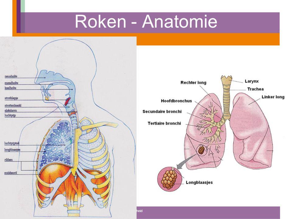 Roken - Anatomie Instituut voor Sportstudies, Opleiding: Sport, Gezondheid en Management