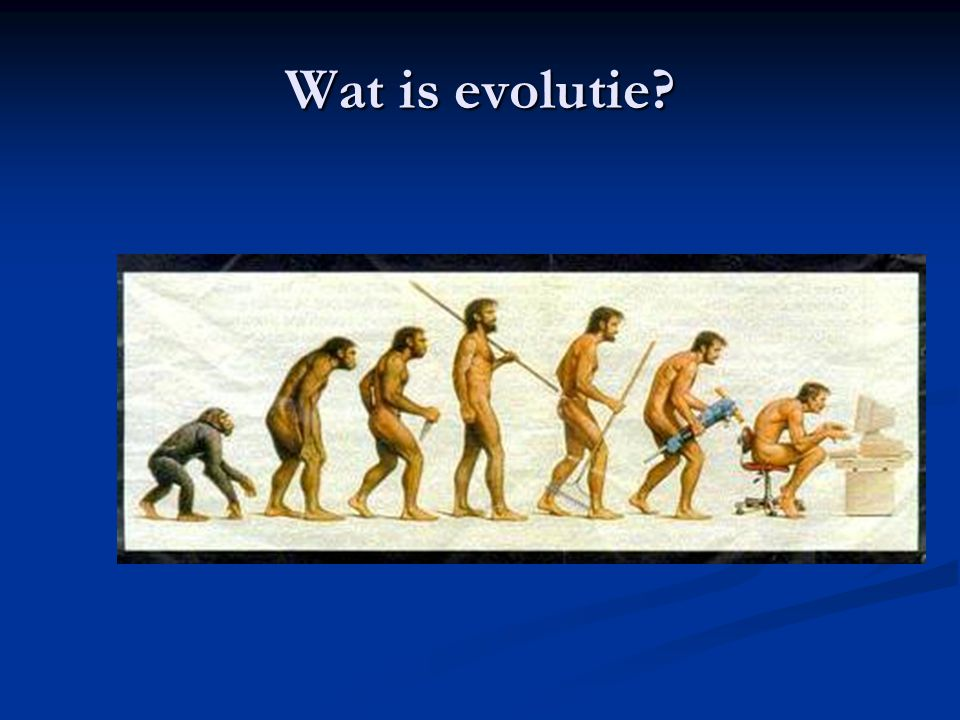 Wat is evolutie