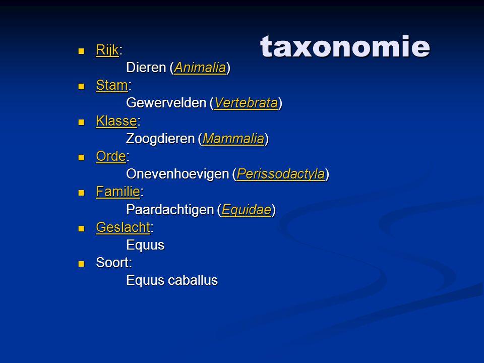taxonomie Rijk: Dieren (Animalia) Stam: Gewervelden (Vertebrata)