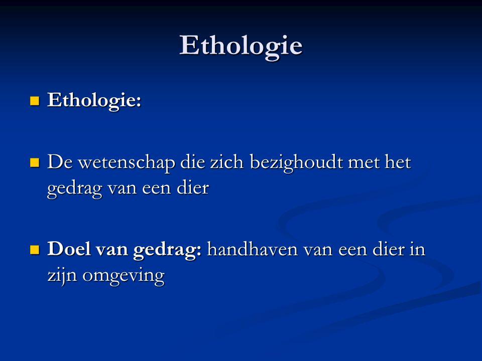 Ethologie Ethologie: De wetenschap die zich bezighoudt met het gedrag van een dier.