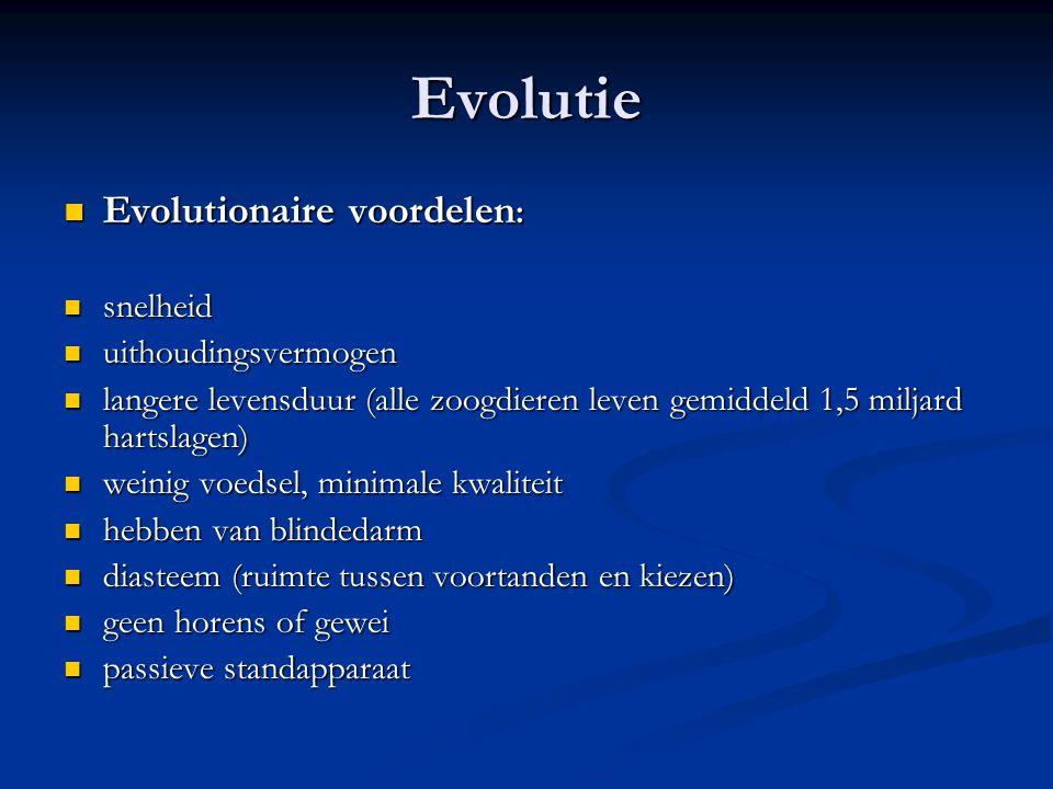 Evolutie Evolutionaire voordelen: snelheid uithoudingsvermogen