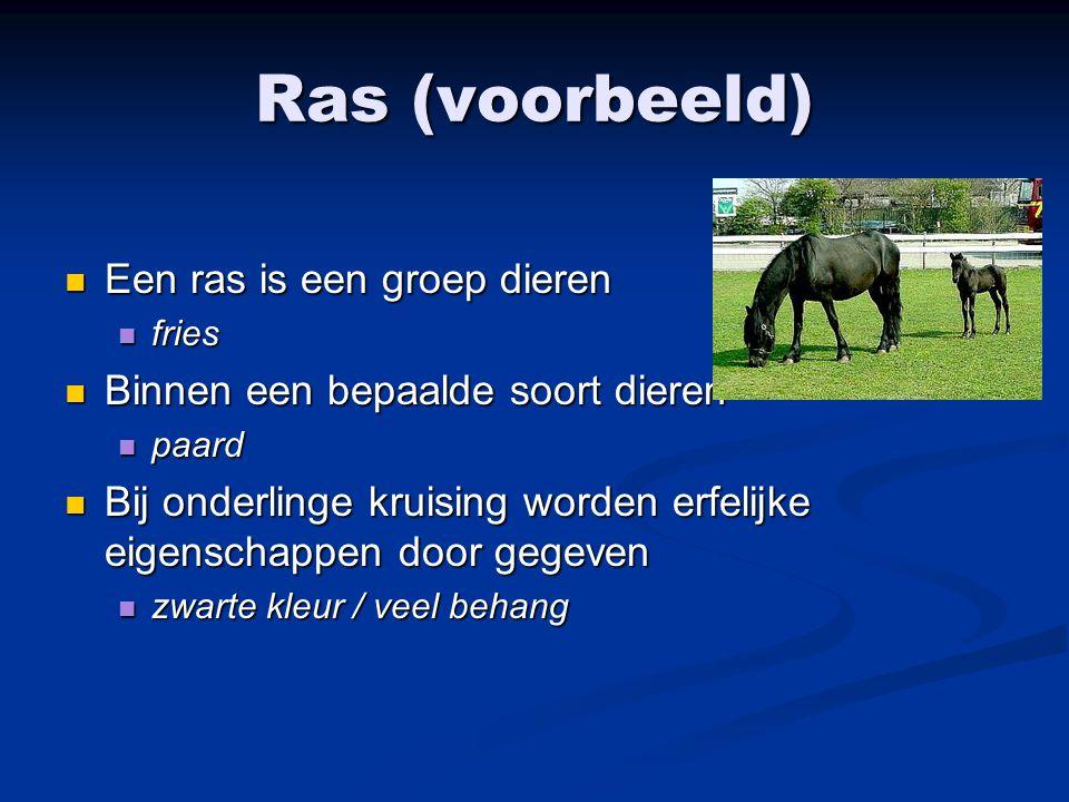 Ras (voorbeeld) Een ras is een groep dieren