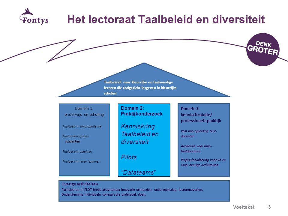 Het lectoraat Taalbeleid en diversiteit