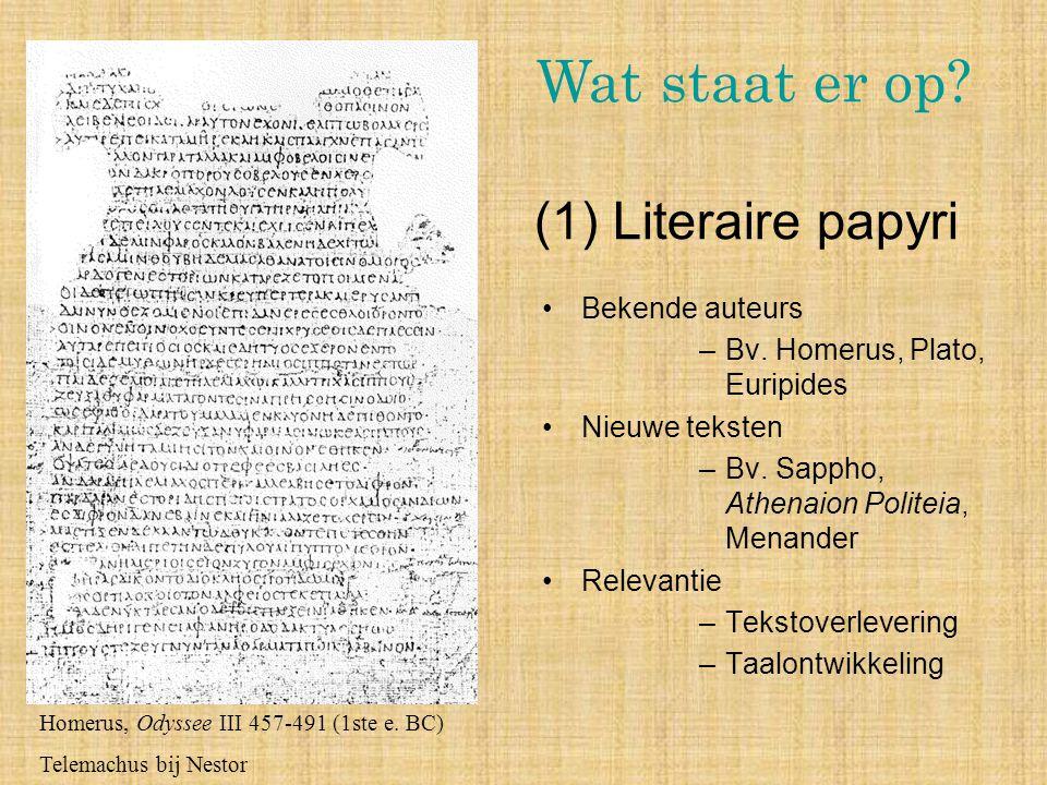 Wat staat er op (1) Literaire papyri Bekende auteurs