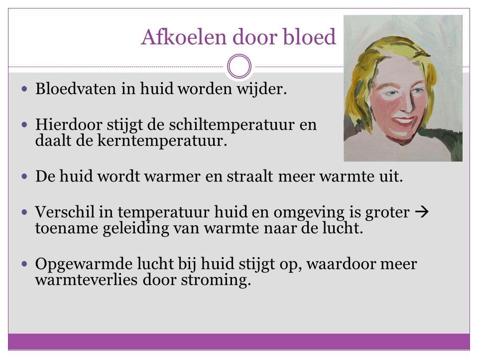Afkoelen door bloed Bloedvaten in huid worden wijder.