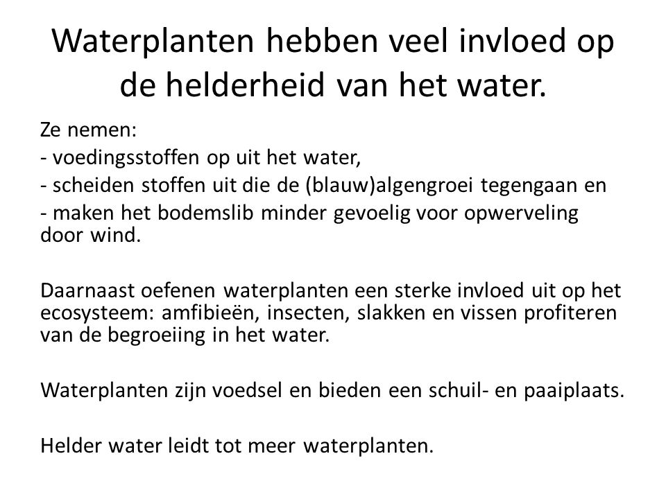 Waterplanten hebben veel invloed op de helderheid van het water.