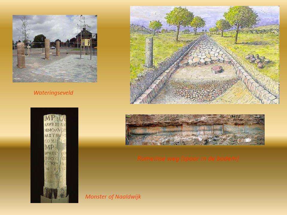 Romeinse weg (spoor in de bodem)