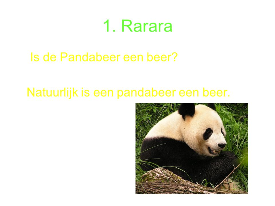 1. Rarara Is de Pandabeer een beer