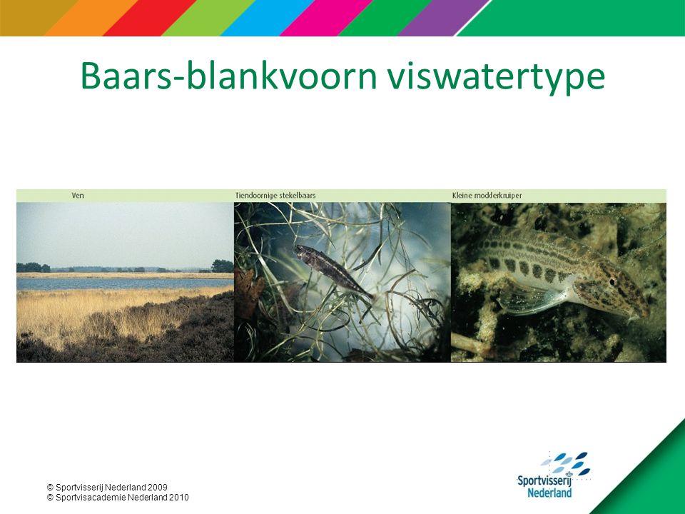 Baars-blankvoorn viswatertype