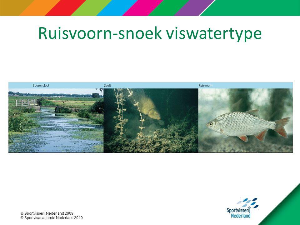Ruisvoorn-snoek viswatertype