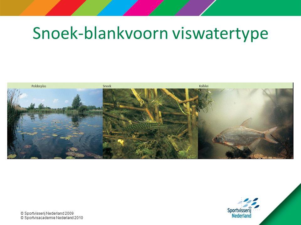 Snoek-blankvoorn viswatertype