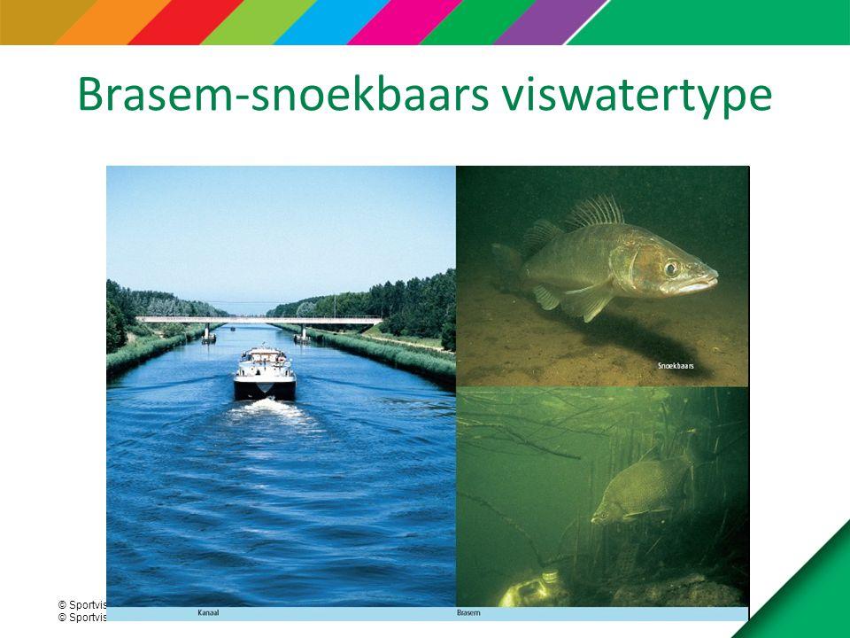 Brasem-snoekbaars viswatertype